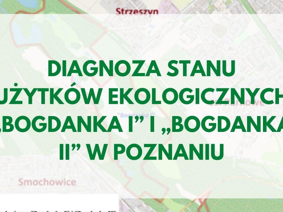 Bogdanka - diagnoza