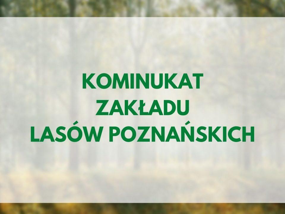 komunikat Zakładu Lasów Poznańskich